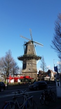 Only windmill in the main city